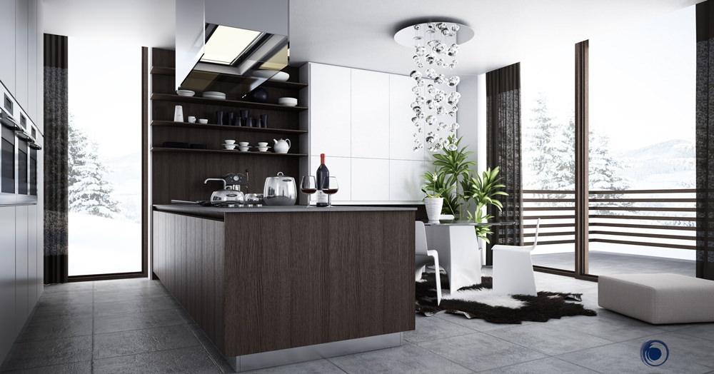 black comtemporary kitchen design
