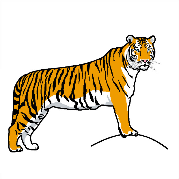 amazing tiger clipart