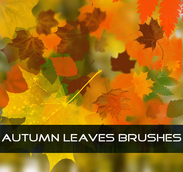 fine fall leaves brushes
