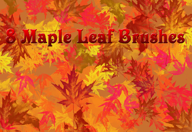 Maple Fall Leaves brushes