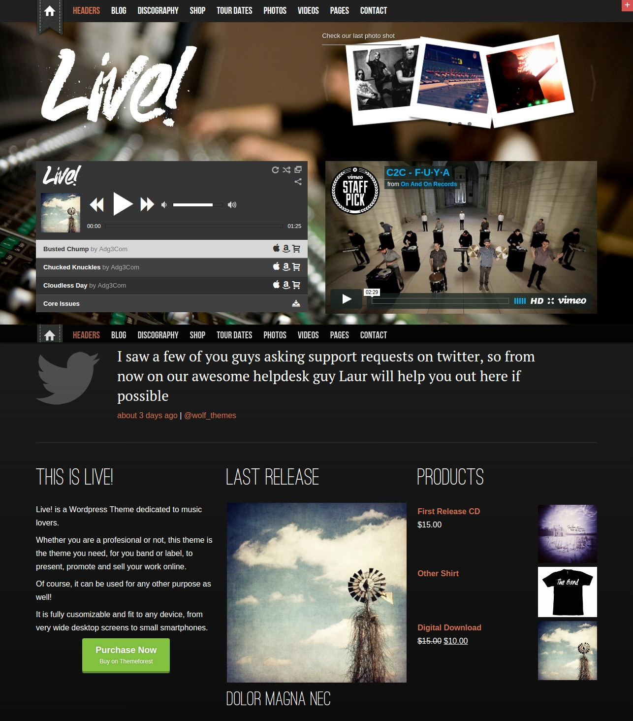 Live Music WordPress Theme - $59