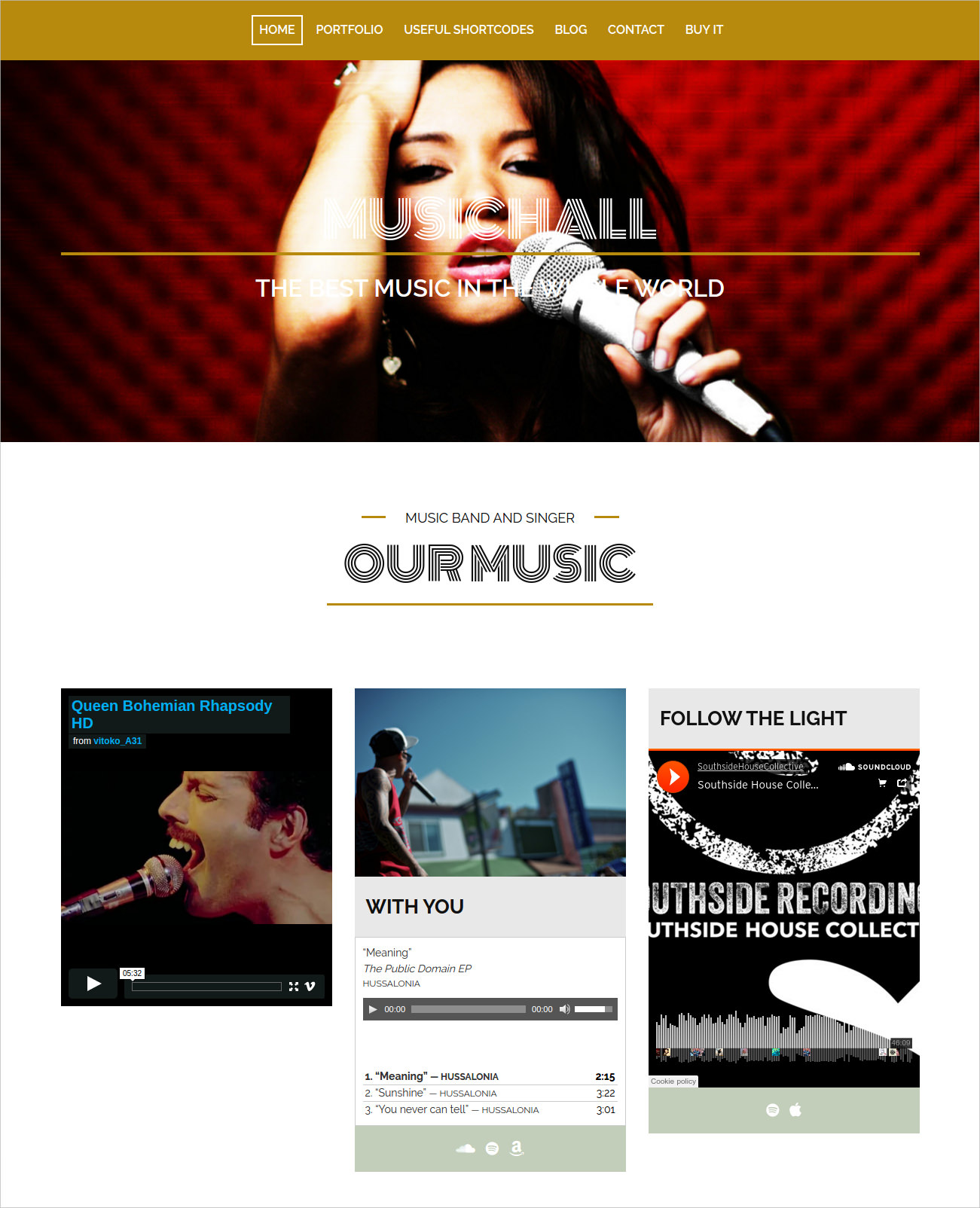 WordPress Theme for Musicians & Bands - $49