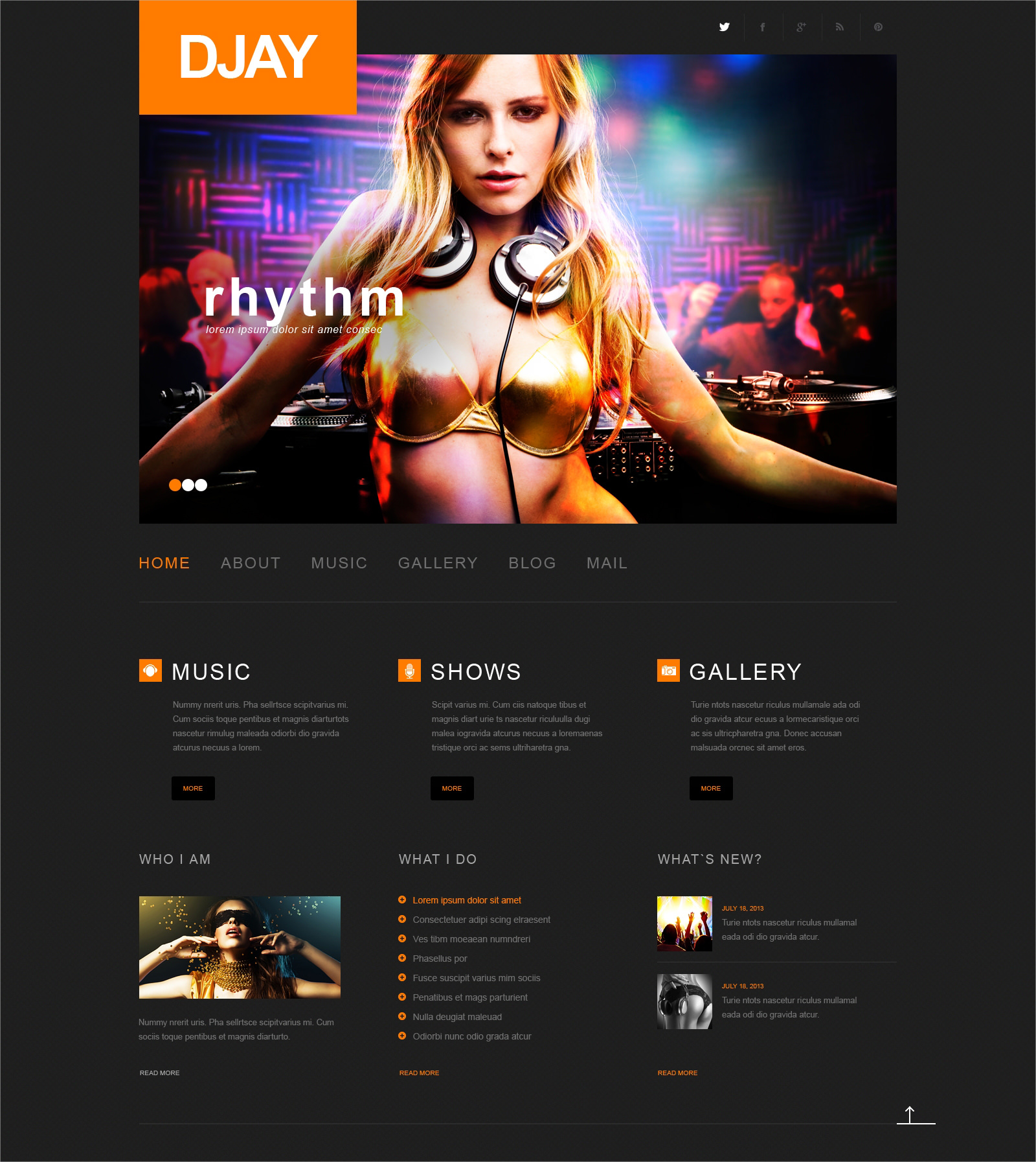 dj resoponsive wp theme 75