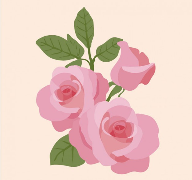 pretty pink rose vector