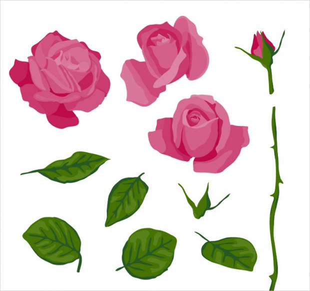 Pink Rose Vector in Parts