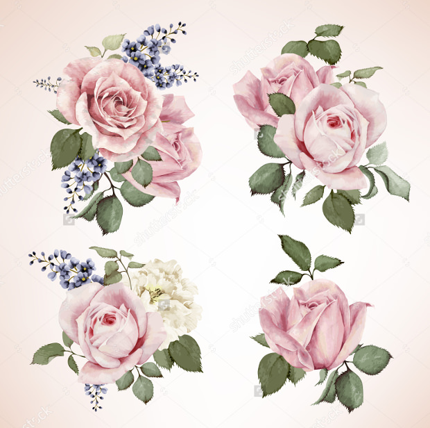 bouquet of roses in vector