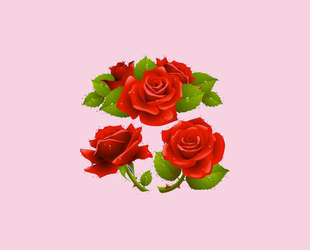 red realistic roses vector