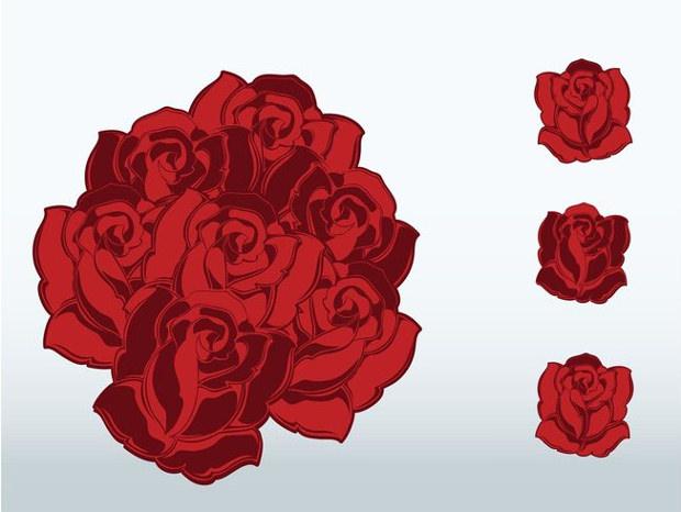 elegant flowers vector of red roses