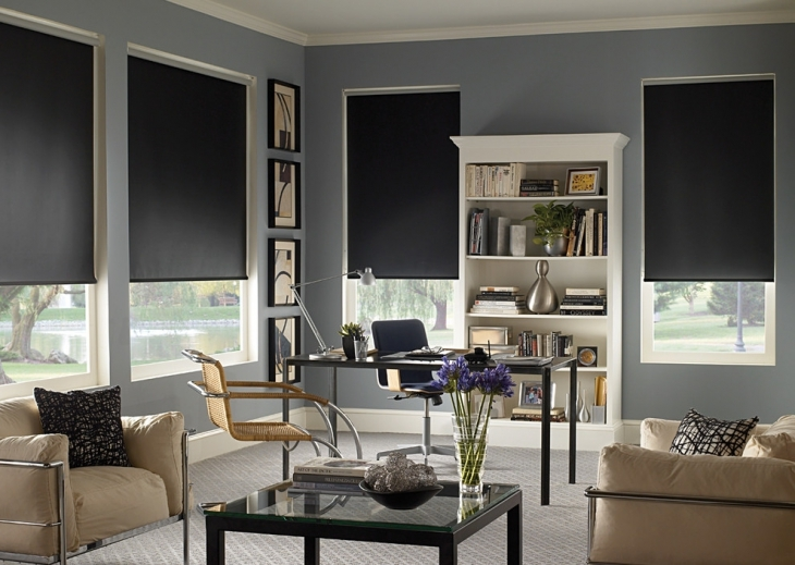Fabulous Home Office with Roller Window Shades