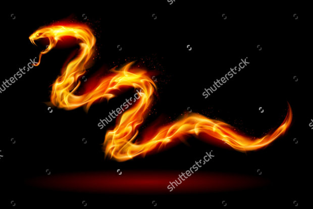 vector fire snake on black background