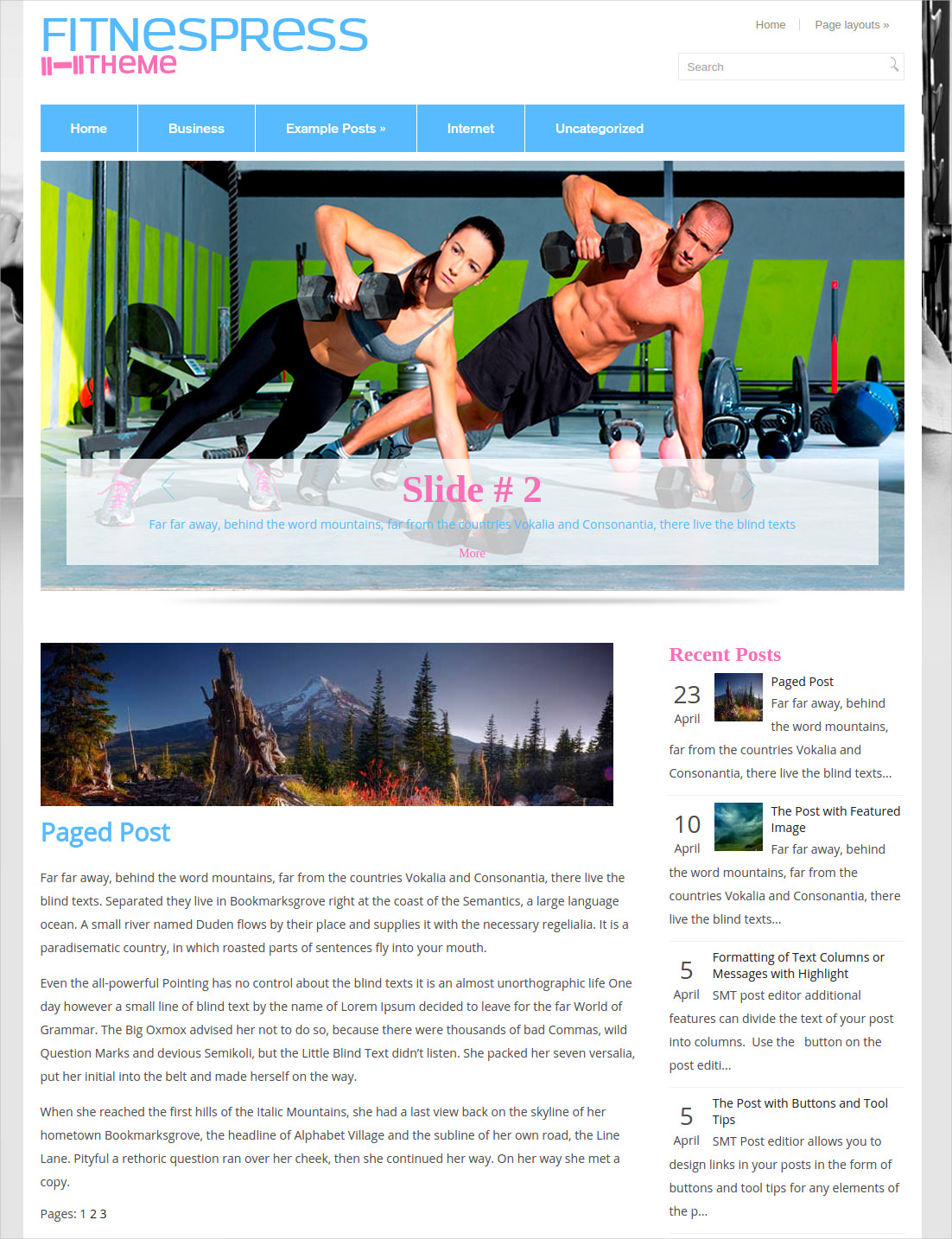 fitness blog theme