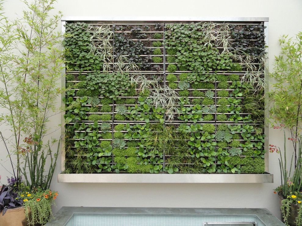 Outdoor Garden Green Wall