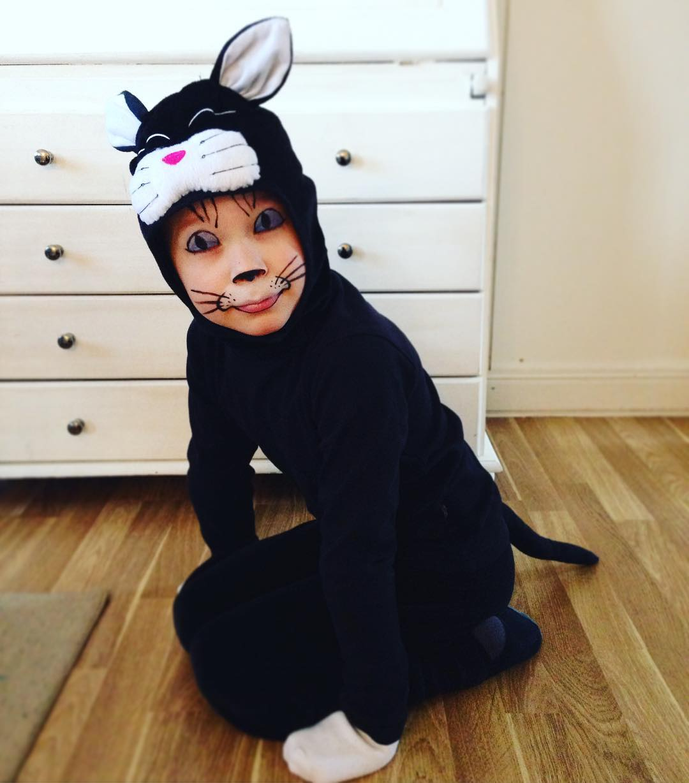 fearful cat makeup