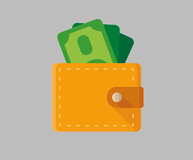 finance money pay purse icon