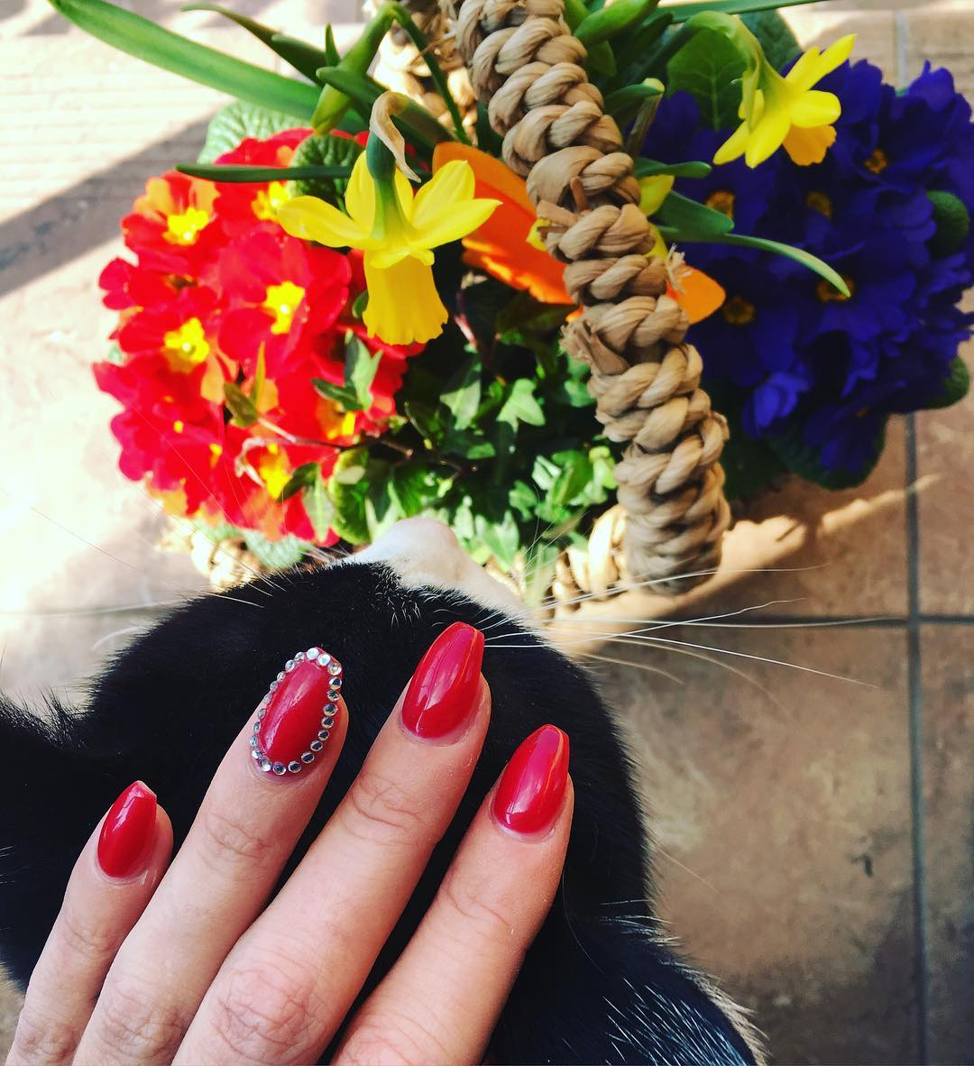 Red Decorated Nail