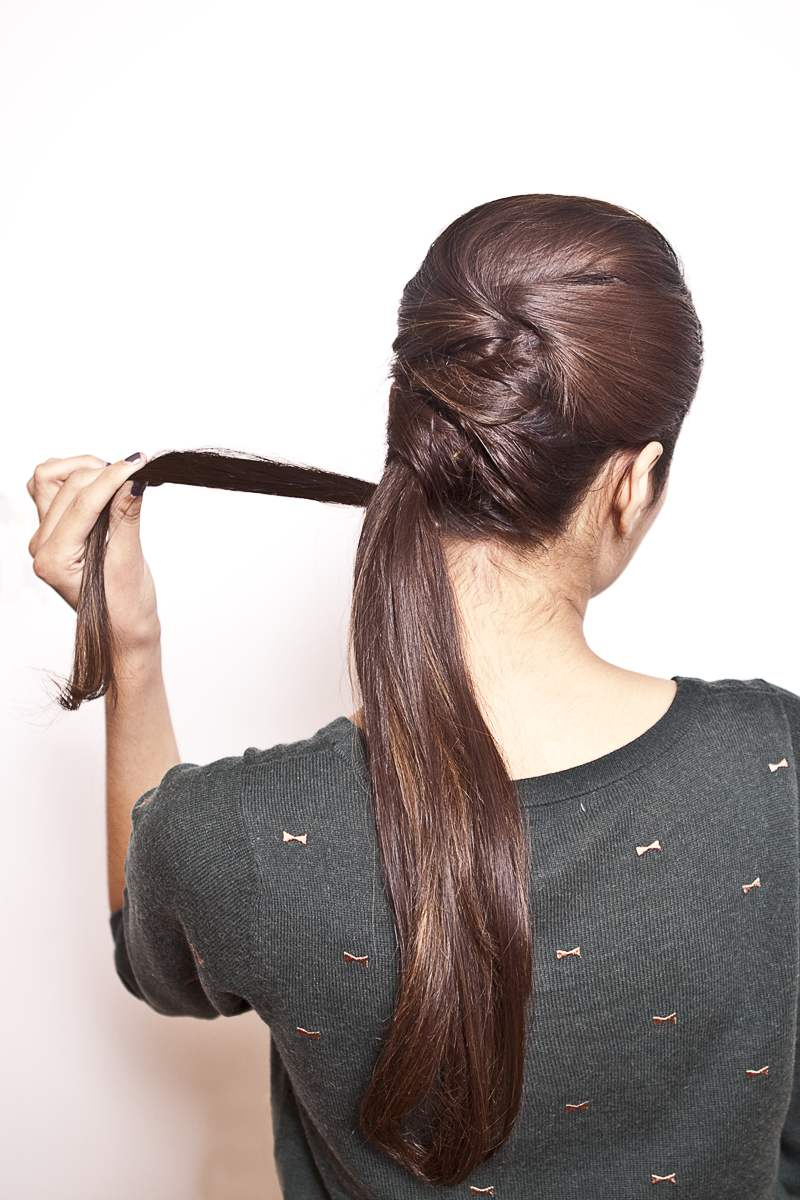 Fancy Ponytail