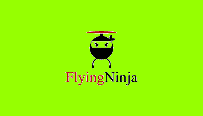 Flying Ninja Logo Design