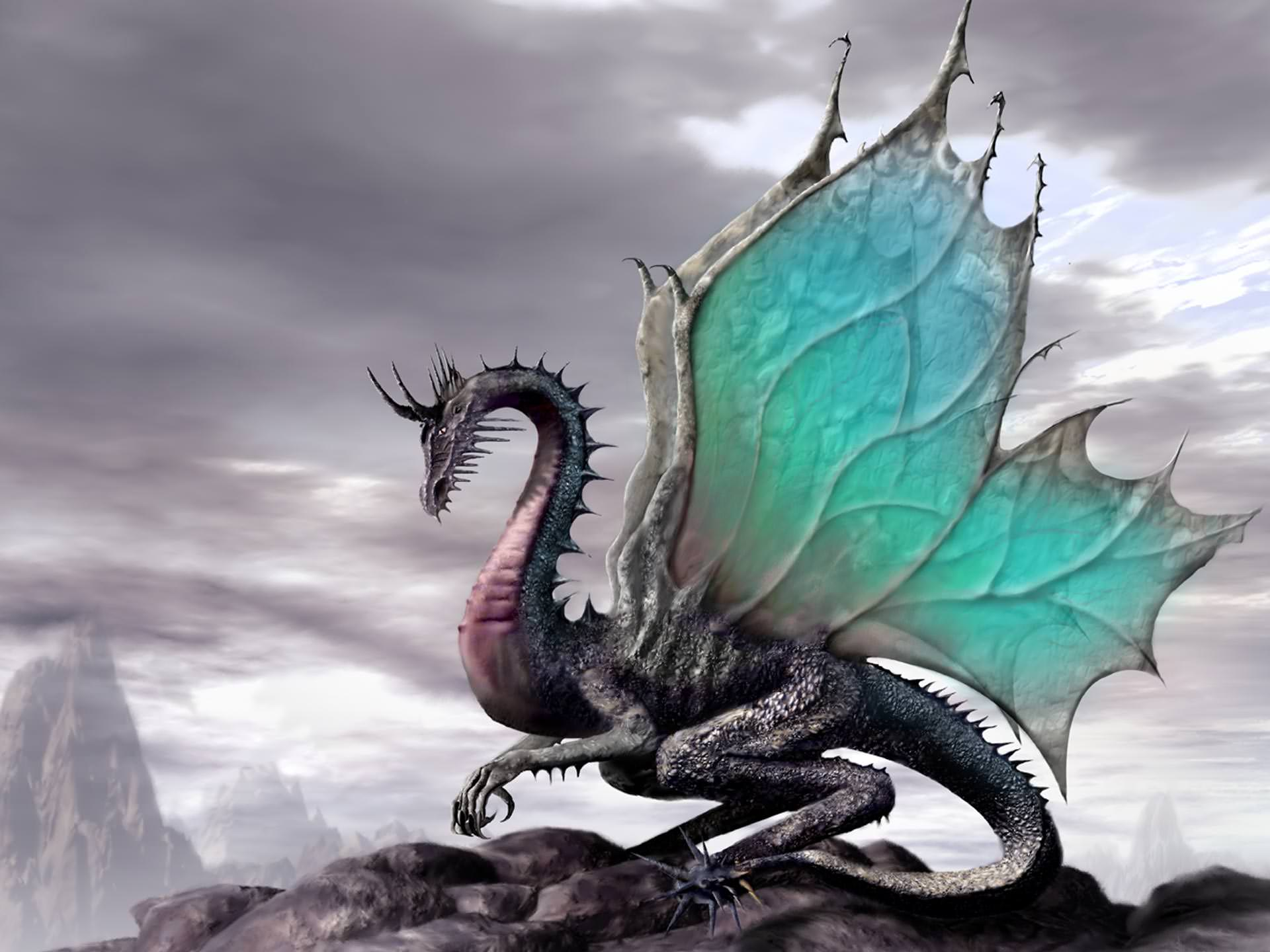 Beautiful Colored Wallpaper of Dragon