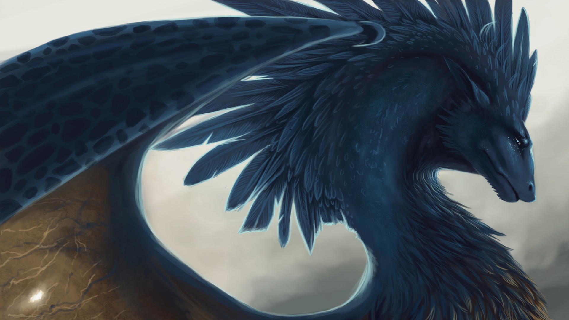 Feathers Art Dragon Design Wallpaper