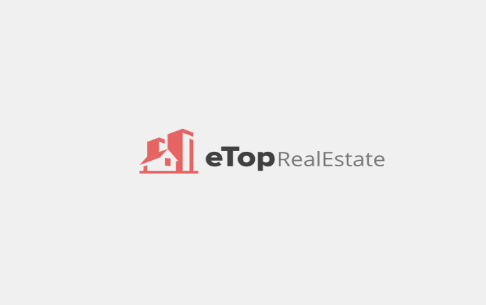 Real Estate Agent Logo Design