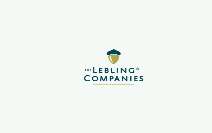 Real Estate Company Logo Design