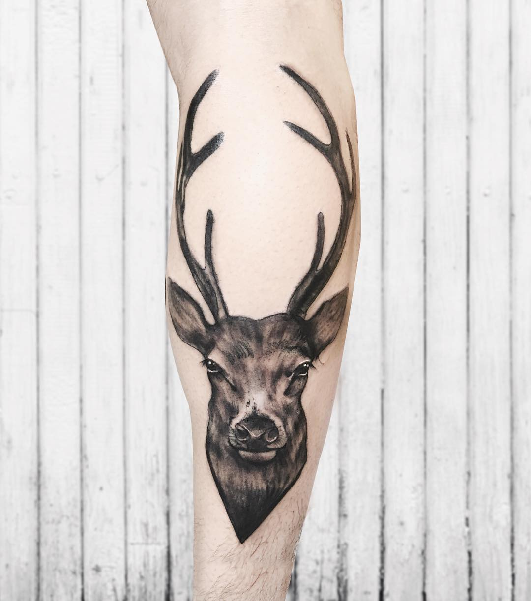 attractive deer tattoo on leg