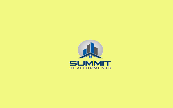 Developer Logo Design