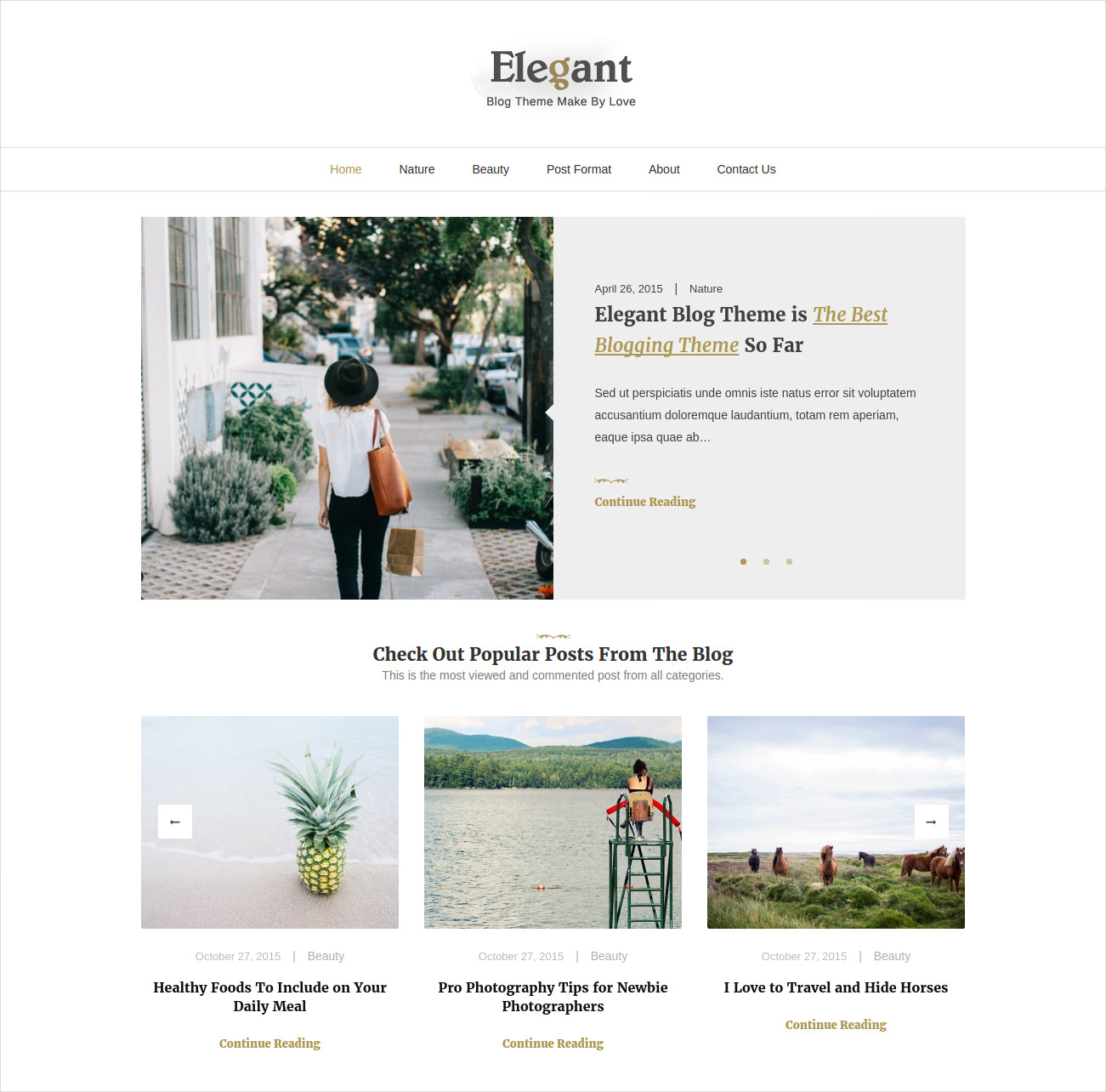 Elegant Minimal WordPress Blog Theme
