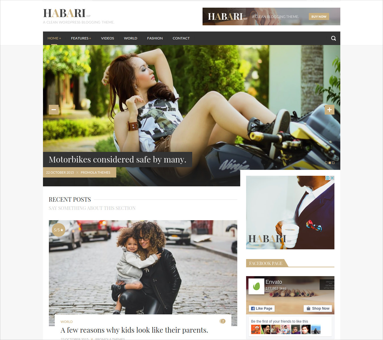 responsive wordpress blog theme 44