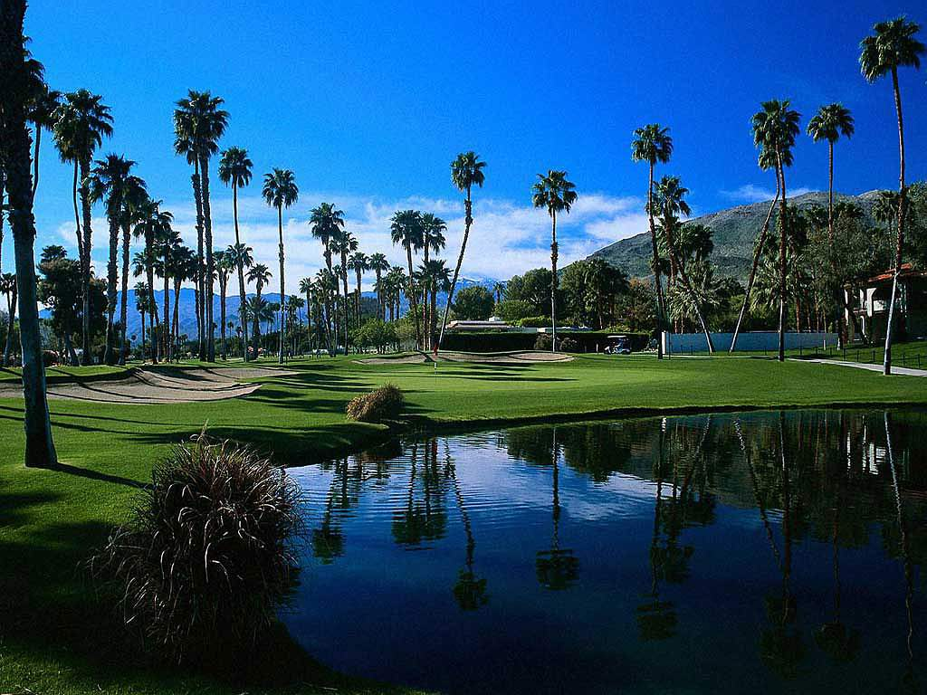 Golf Background with Palm Trees