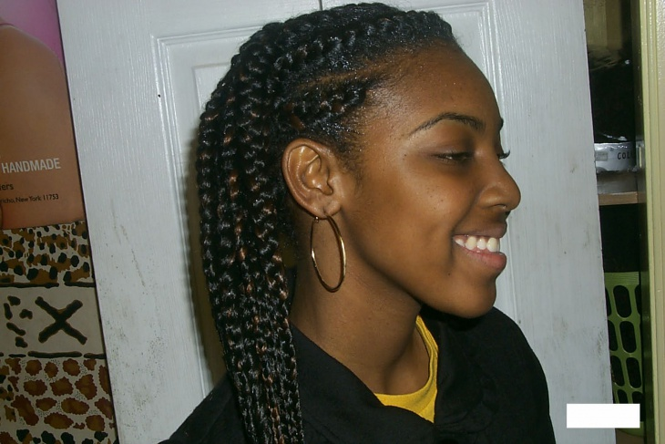 african french braids pictures