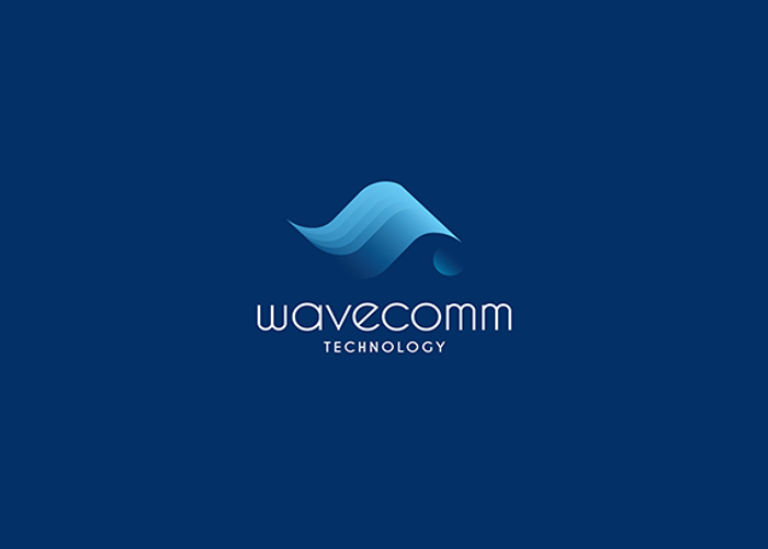 Wave Logofor Technology Services