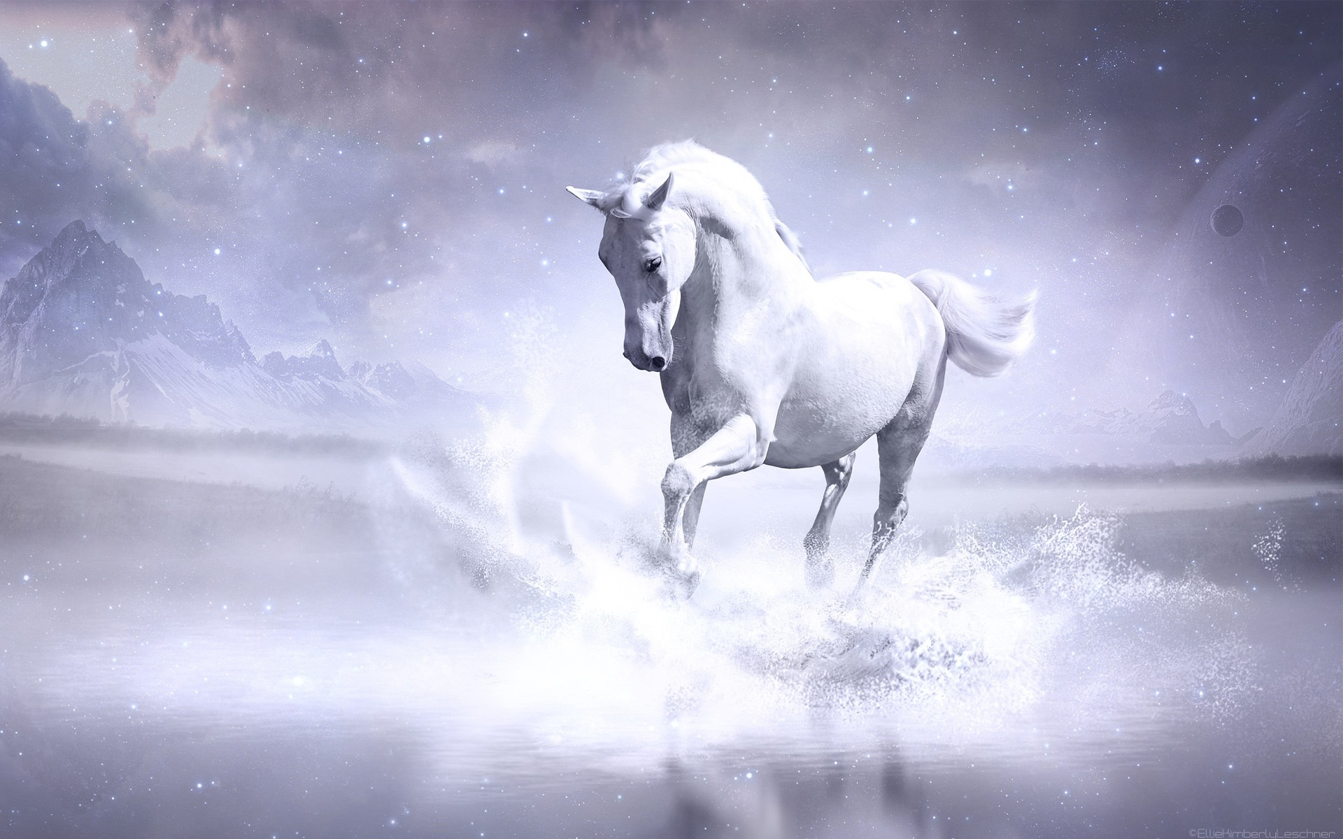 Running White Horse Wallpaper Background