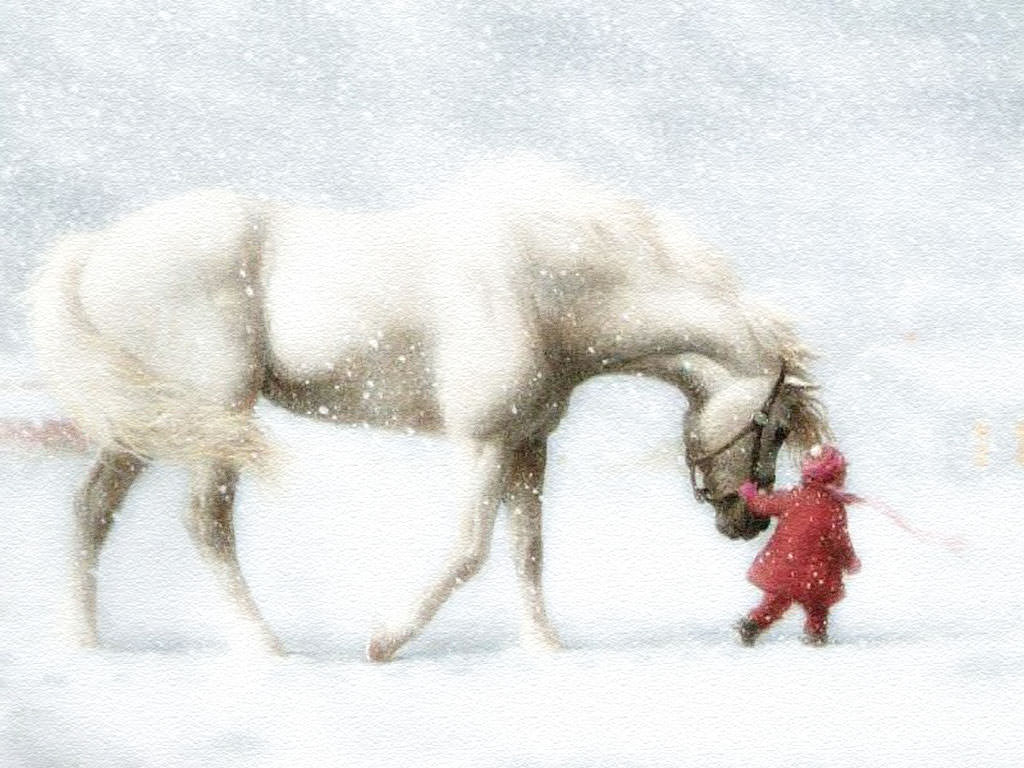 Wallpaper of Animal Horse with Kid in Snow