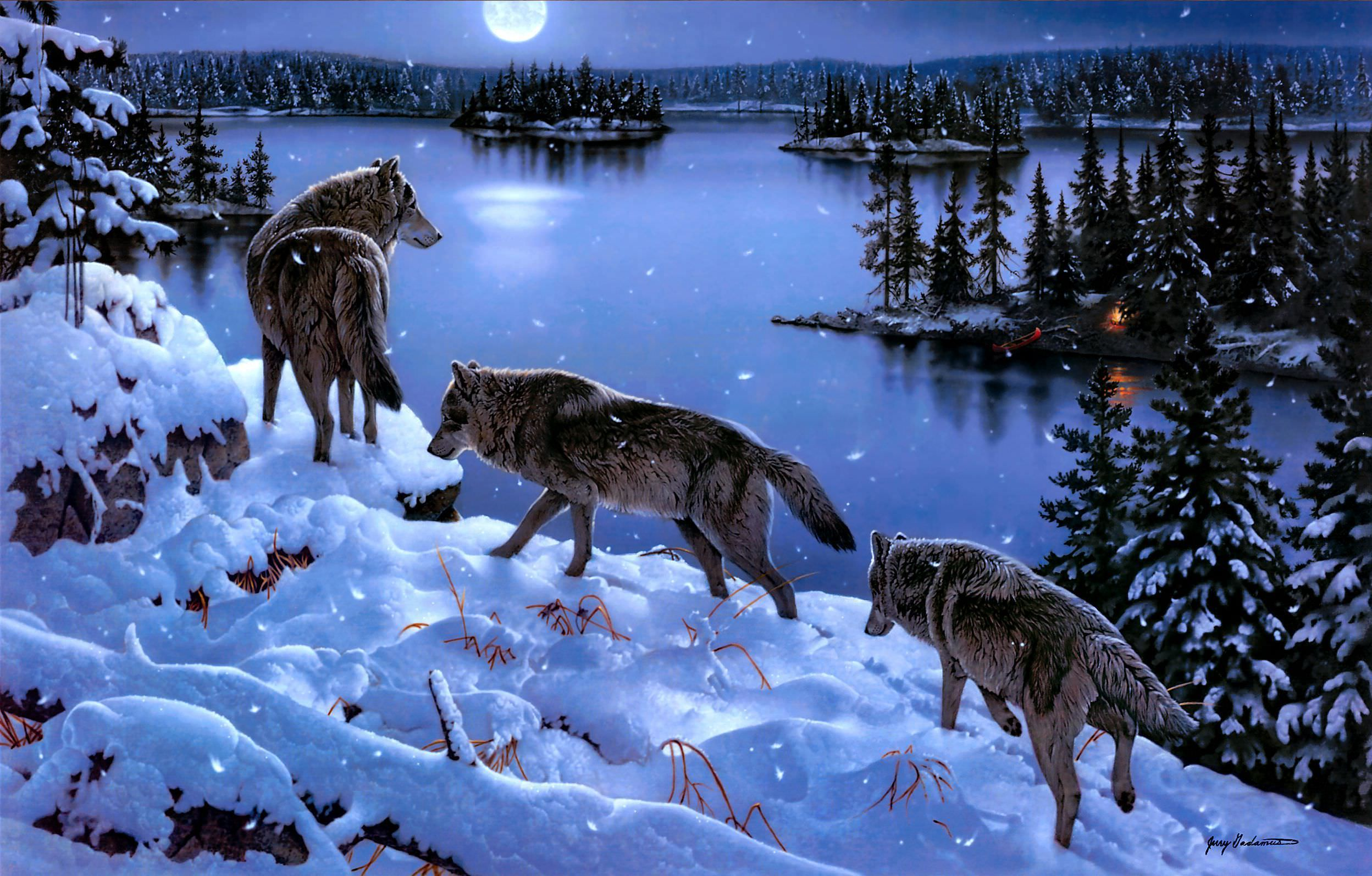 Wonderful Natyre with Wolfs Image