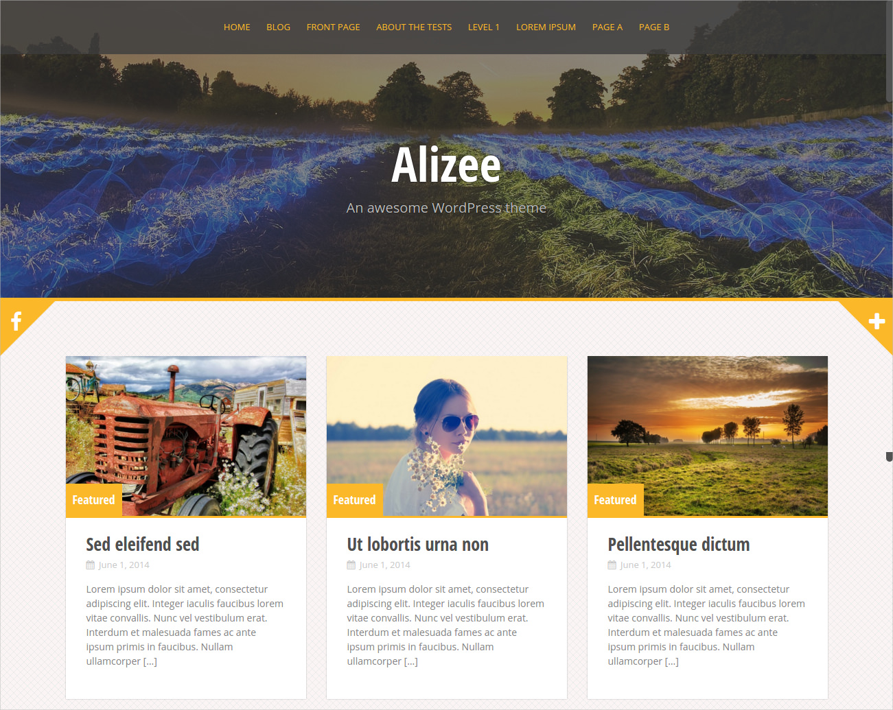 Grid-Based Theme with Fully Responsive