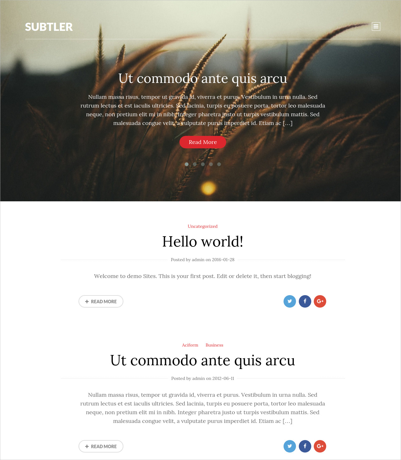minimal blog style wordpress theme