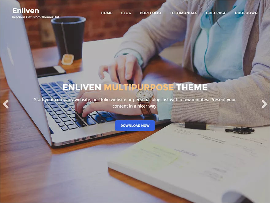 enliven wp theme free