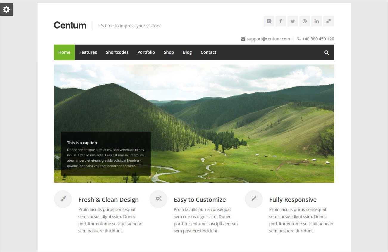 premium responsive wordpress 44