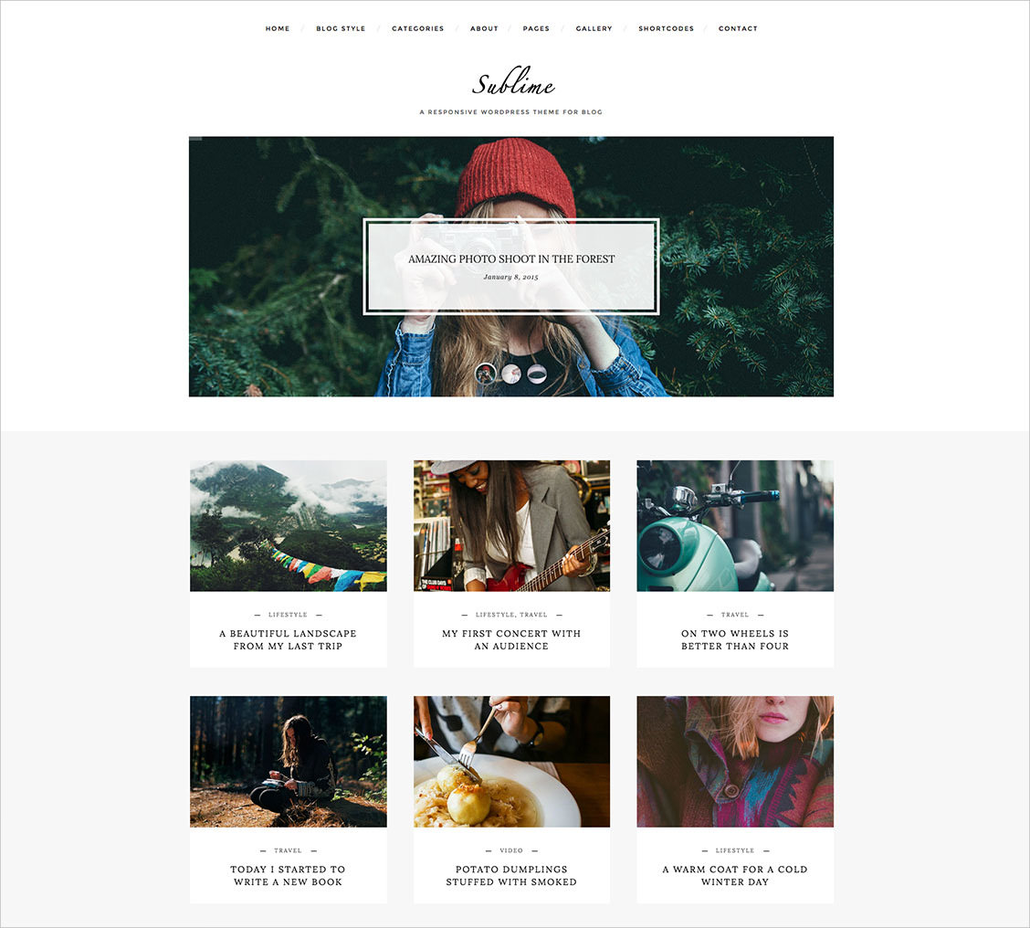 responsive wordpress theme for blog 49
