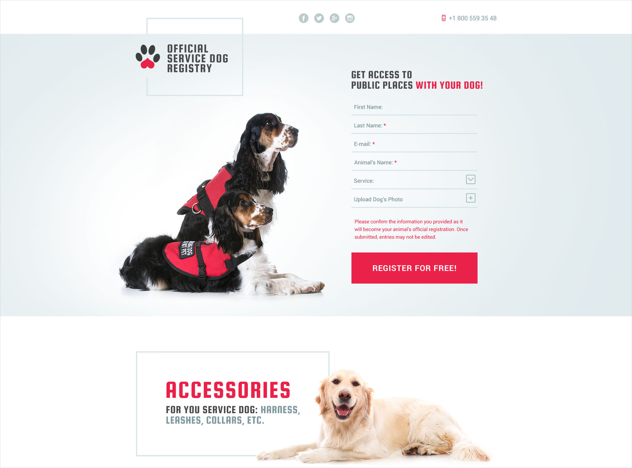 dog responsive landing page template 14
