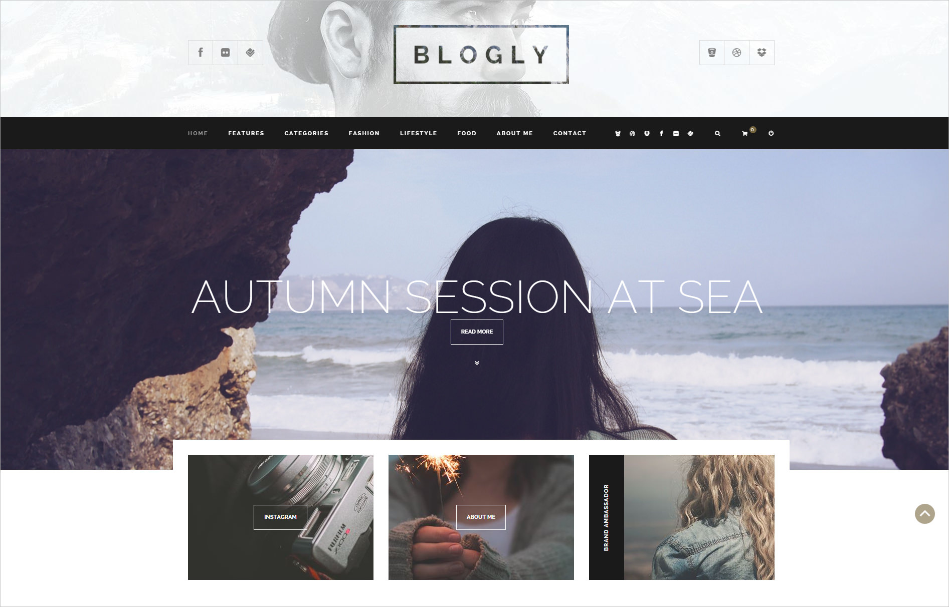 Fancy WordPress Blog Theme