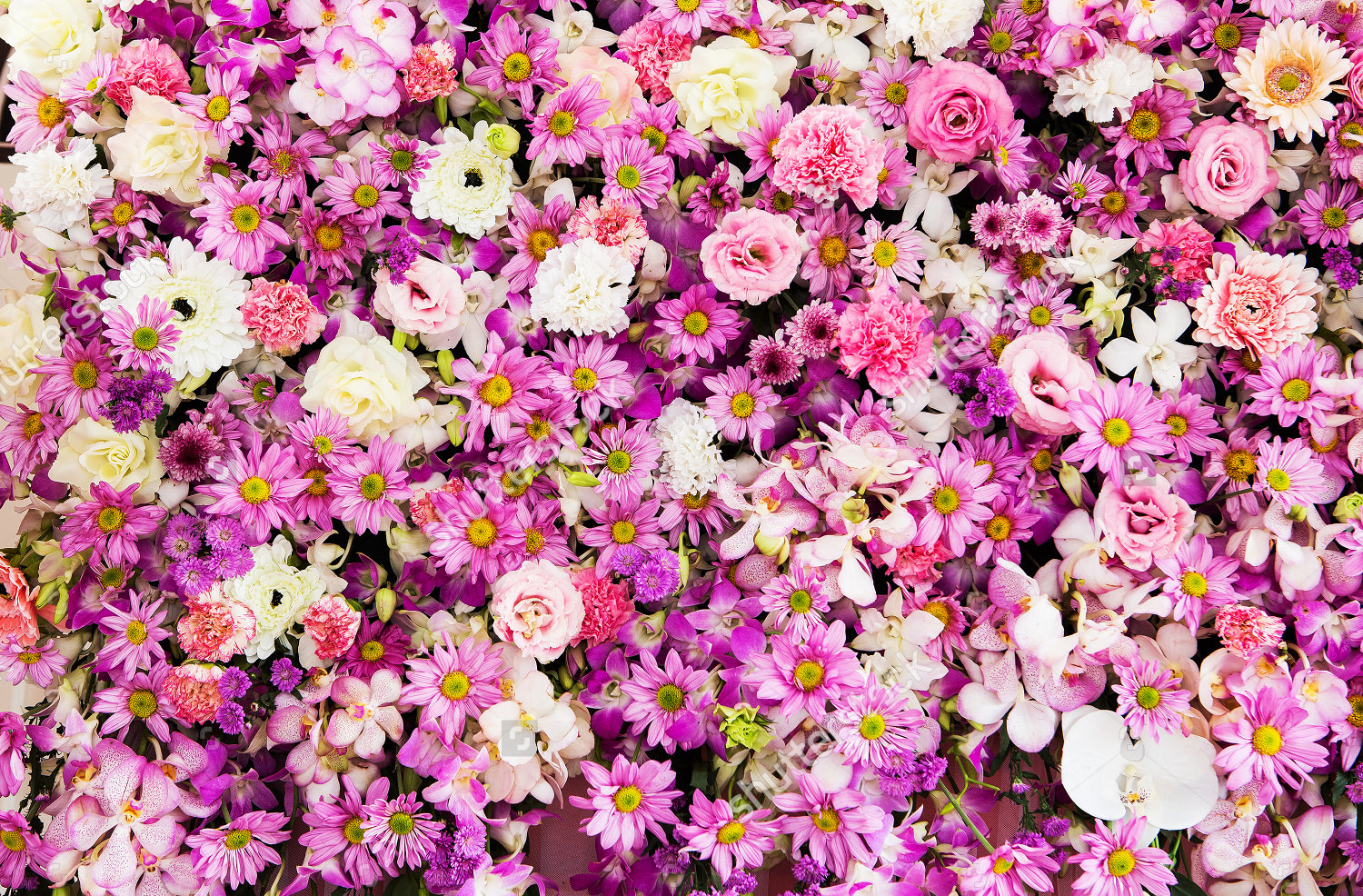Beautiful Flowers Wedding Background