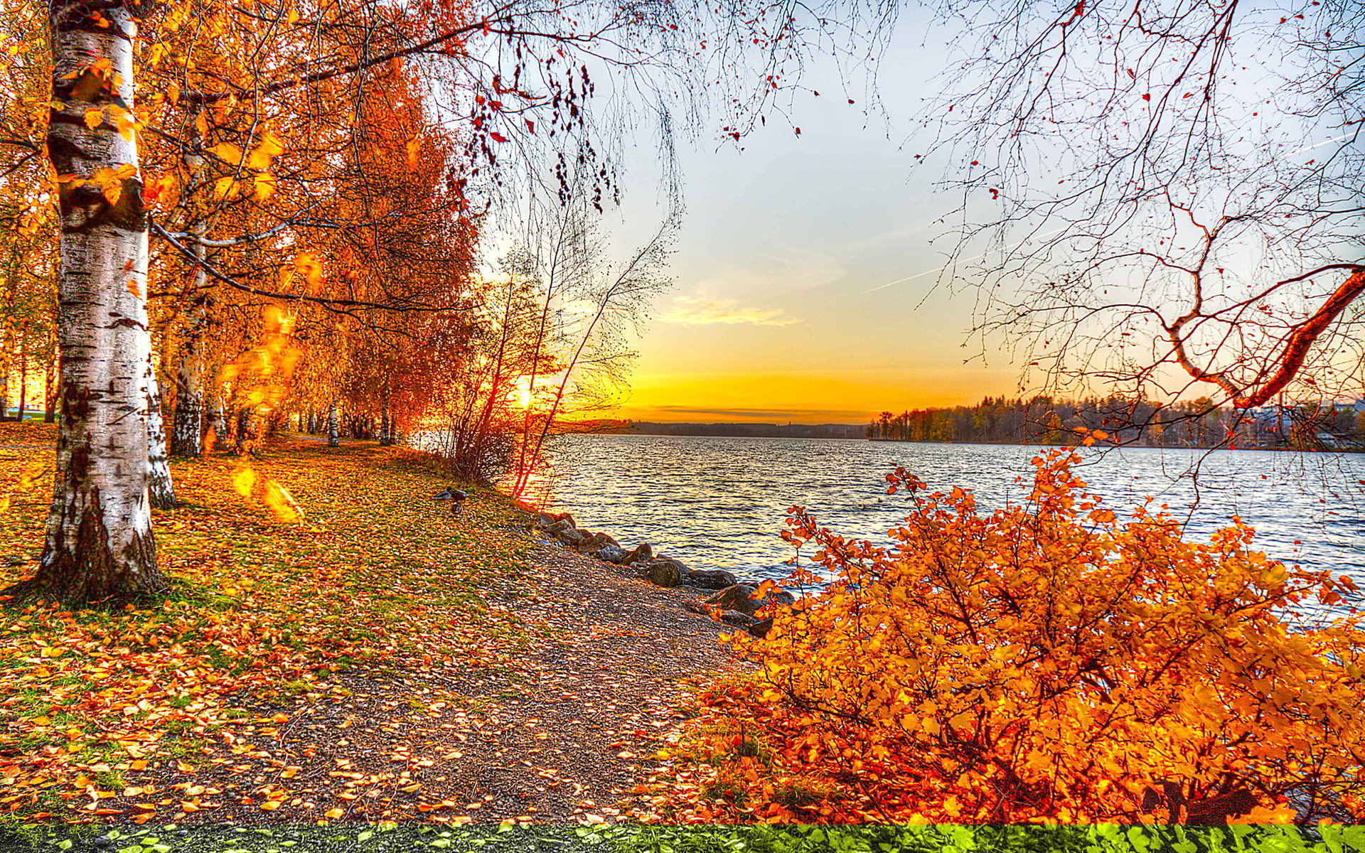 autumn lake sunset wallpaper