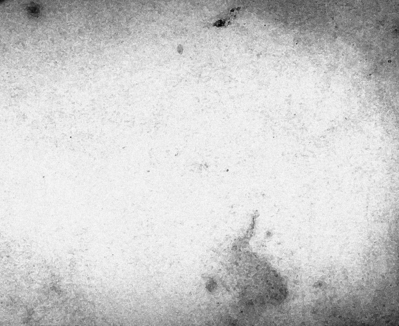 White Grunge Background