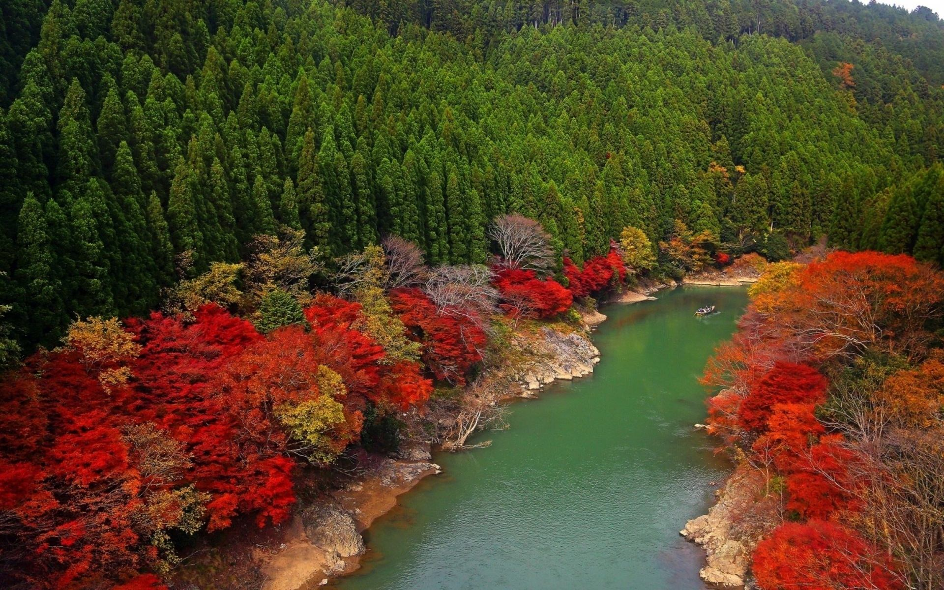 blowing autumn river wallpaper