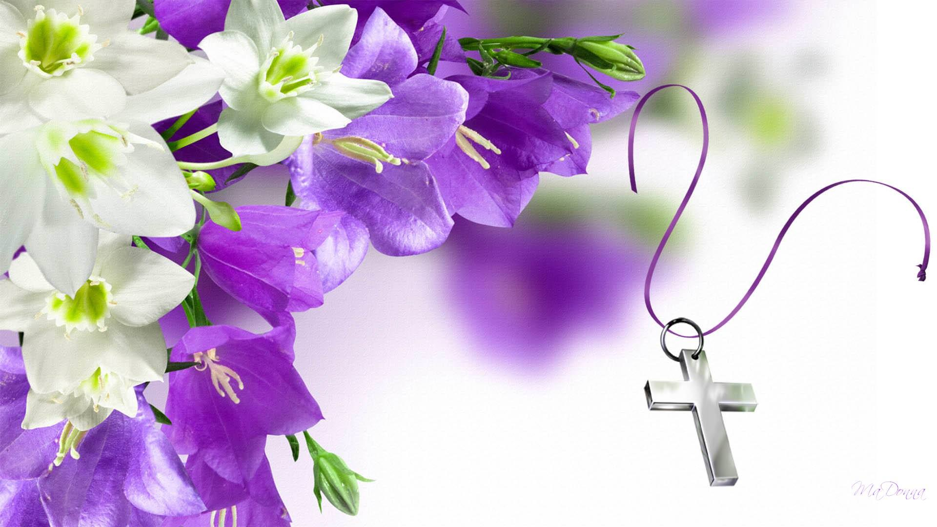white and purple flowers background