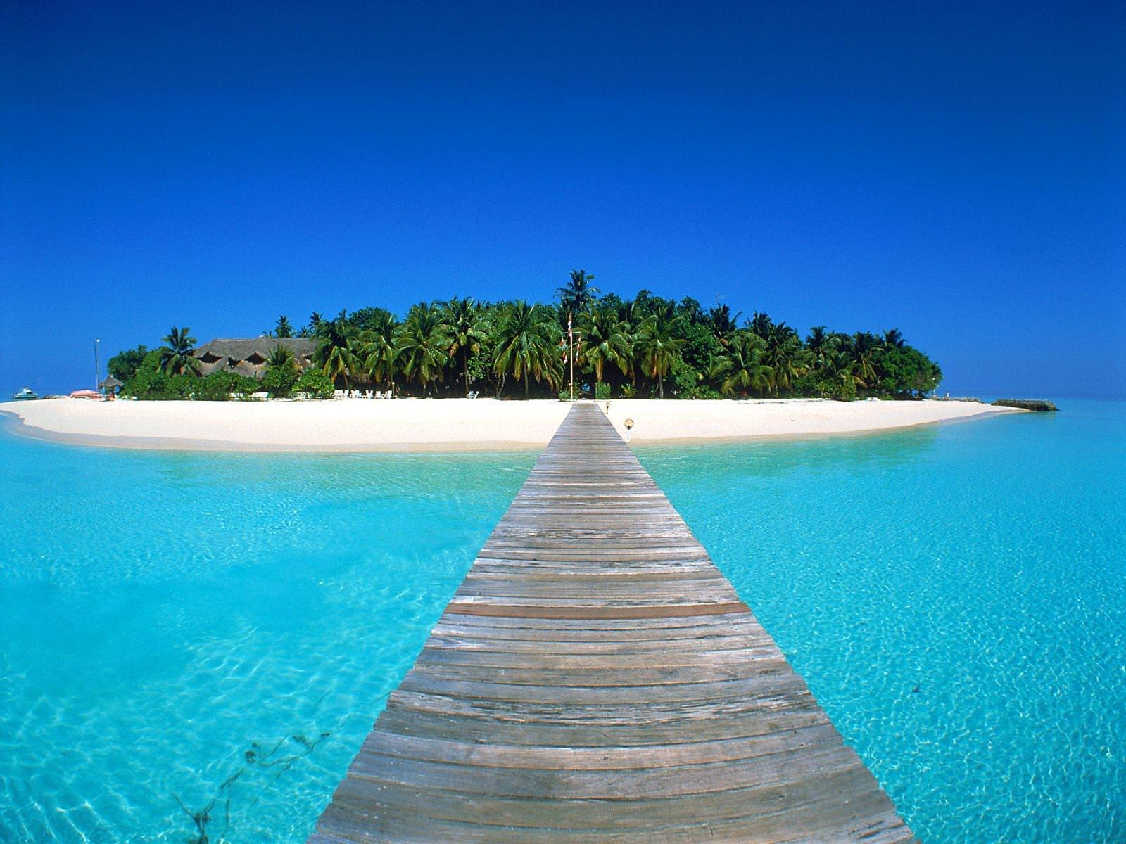 Tropical Oasis Island Maldives Background