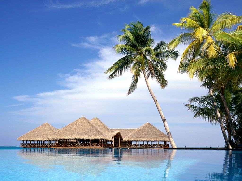 Free Desktop Tropical wallpaper