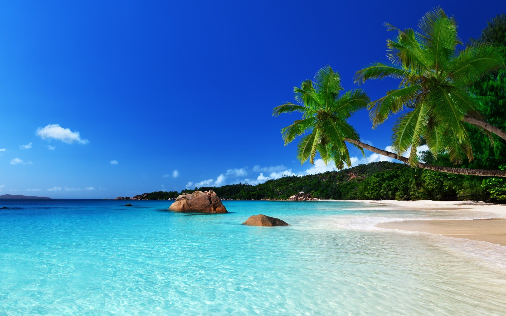 Tropical Island Beach Ambience Sound: 28+ Tropical Beach Backgrounds, Wallpapers, Images